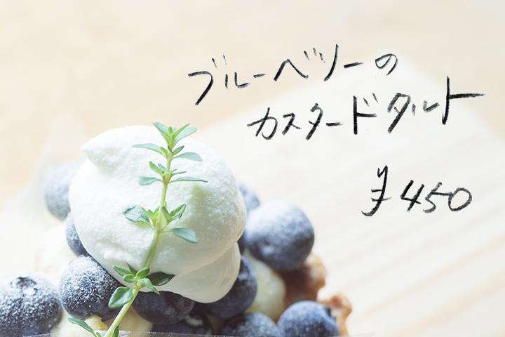 0608_blueberry