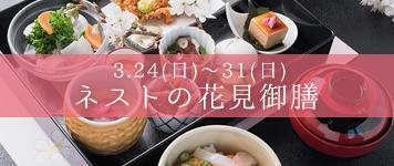 【期間限定】ネストのお花見御膳(2019年3月24日~3月31日まで)