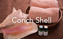 Conch Shell コンクシェル  エステティックサロン